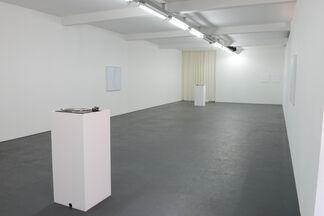 JEN DENIKE:Die Grünen Löwen, installation view