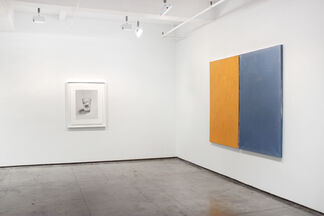 ON VIEW, installation view