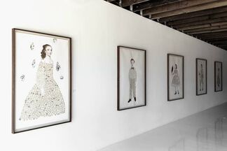 Beauty the Brave, installation view