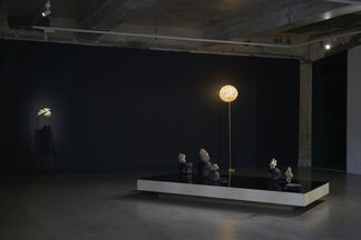 The Palm at the End of the Mind, installation view