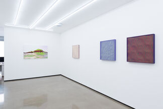 Jonathan Zawada: 'A Particular Turbulent Wave', installation view