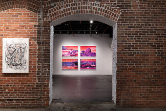 Hypercolour Fantasy: Infra Realism, installation view