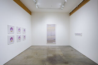Anna Von Mertens: Nature and Other Relationships, installation view