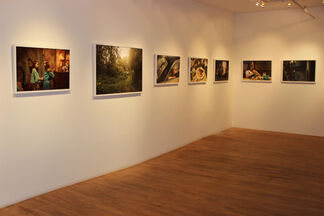 Holly Andres: The Fallen Fawn, installation view
