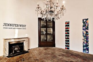 Jennifer West - Ivory Snow and a Shark´s Tooth, installation view