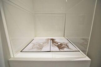 Cheng Chung-chuan: Blaze of Glory, installation view