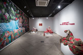 I Am Your Only Tiger, installation view