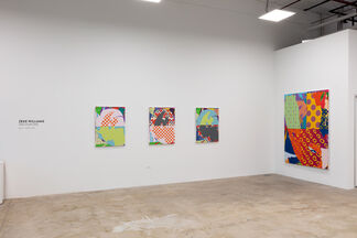 Zeke Williams: TWO FOR ONE, installation view
