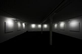 Céleste Boursier-Mougenot: un cabinet de curiosité, installation view