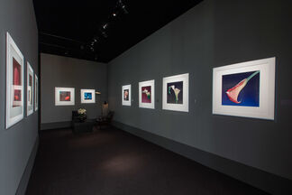 Hamiltons Gallery at TEFAF Maastricht 2014, installation view