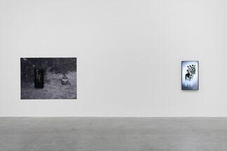 'A Walking Shadow', installation view