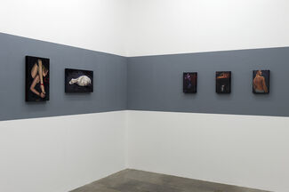 """""""AUDREY NERVI - DIDN'T HURT ONE BIT """", installation view"""