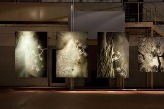 NOMAD TWO WORLDS (Alte Münze, Berlin), installation view