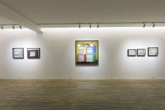 Peng Jian - Gorgeous, installation view
