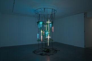 "Bianca Bondi - ""Moths drink the tears of sleeping birds"", installation view"