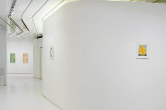 Conor Backman: Diorama, installation view