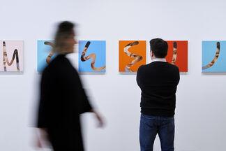 Lino Lago: Fake Abstract, installation view