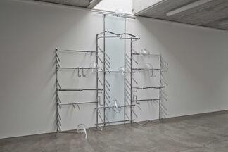 Gabriele Beveridge - Tropisms, installation view