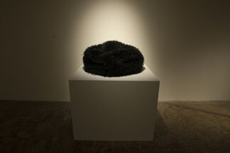 Ingrid Bachmann: Counterpoint, installation view