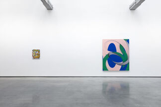 Lesley Vance   A Zebra Races Counterclockwise, installation view