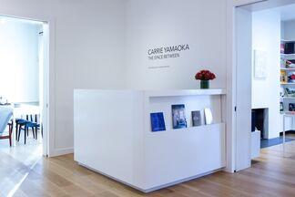 Carrie Yamaoka, installation view