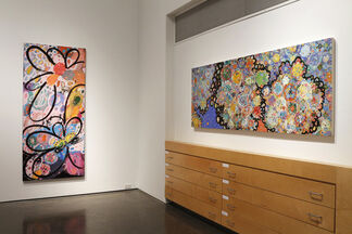"""Colleen Philippi - """"Butterfly Effect"""", installation view"""