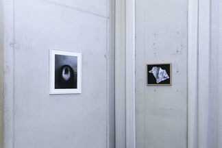Freudenthal/Verhagen - 'Blue is the color of your yellow hair', installation view