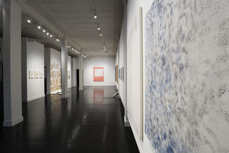 Tongue, installation view