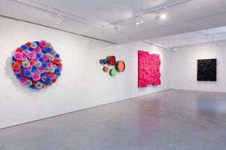 Francesca Pasquali: Plastic Resonance, installation view