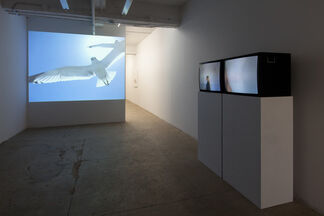 Michelle Elzay: Devour, installation view