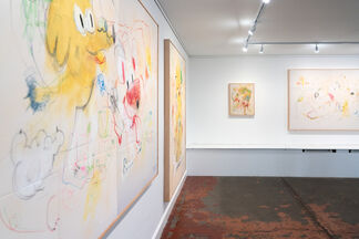 Marroni & Ouanely: Cagnara, installation view