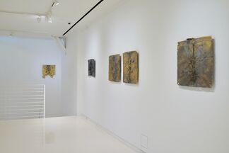 Microcosm & Macrocosm: Shinji Turner-Yamamoto, installation view