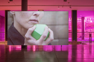 Shahryar Nashat: Skins and Stand-ins, installation view