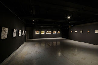 Apertruth, installation view