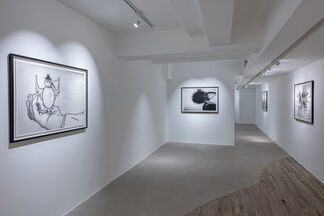 HERE COMES THE ROOSTER, installation view