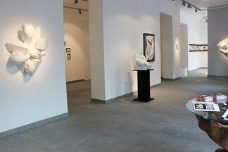 FORMA MENTIS   Paola Ravasio, installation view