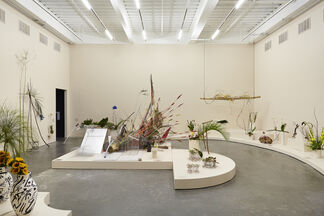 Camille Henrot: The Restless Earth, installation view
