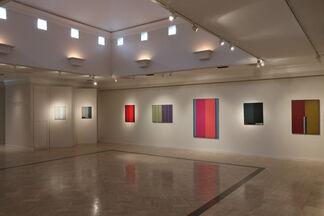 Steven Alexander: Efforts of Affection, installation view