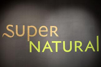 Super Natural, installation view