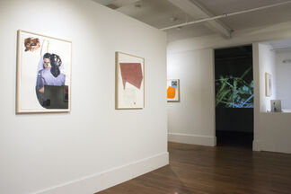 Dani Leventhal - Pine Forest, installation view