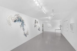 OH2/H2O, installation view