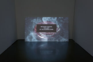Agnieszka Polska   Cuckoo, installation view