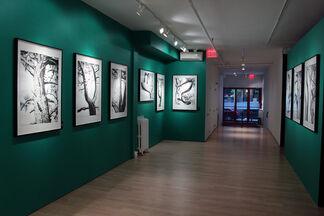 Jamie Hewlett: The Suggestionists, installation view