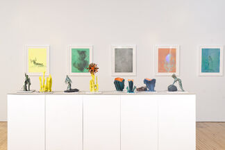 Paul Swenbeck: Holothurians Purring, installation view