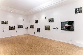 "Elaine Byrne ""La Diritta Via"", installation view"