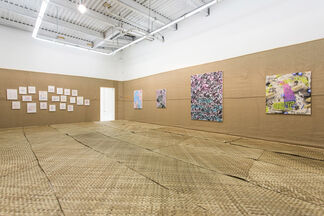 Natural Selection, installation view