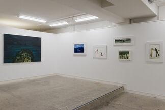 John Walsh, installation view