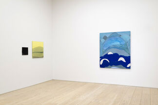 Abdolreza Aminlari and Benjamin King, installation view