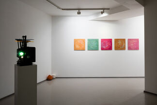 Brian O'Connell | Palomar, installation view