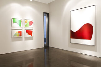 """Jonathan Forrest: """"Open Source"""", installation view"""